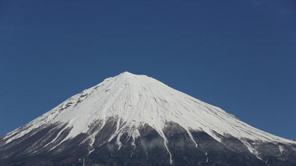 Tanakaiin