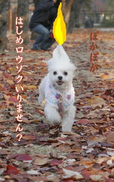 Harousoku